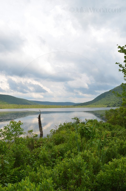 Labrador Hollow in Fabius, New York