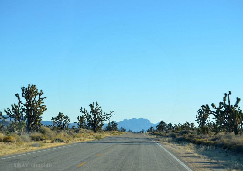 Road through the Mojave