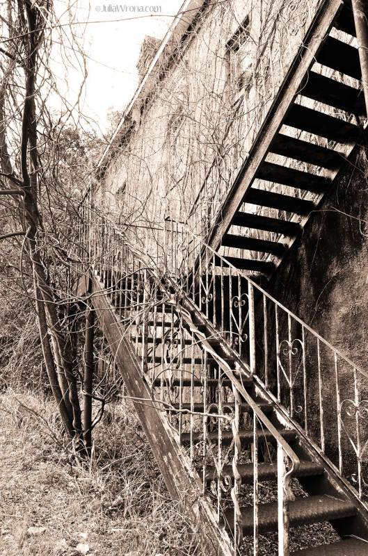 Old Steps Historic House