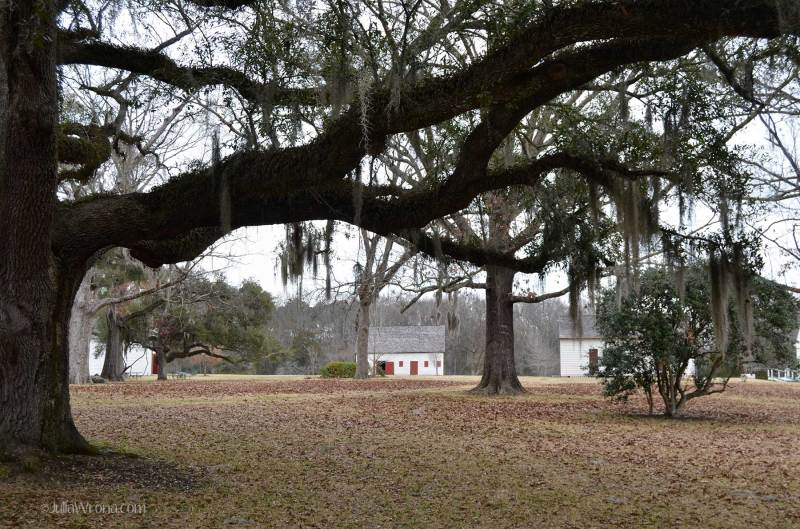 Melrose Plantation at the Natchez Historical Park