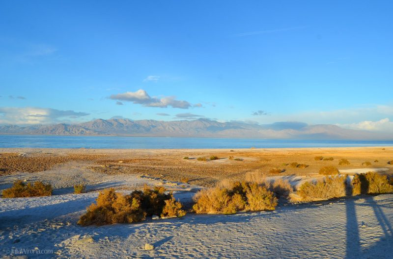 Salton Sea beach late sunrise