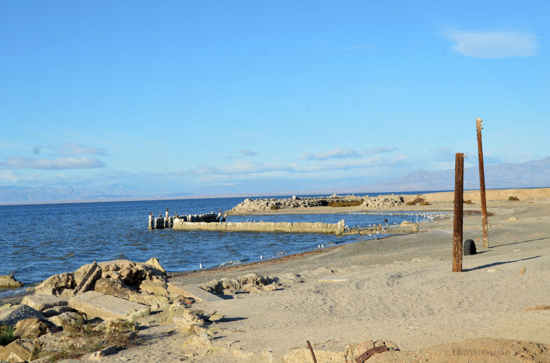 Rotting piers at Bombay Beach