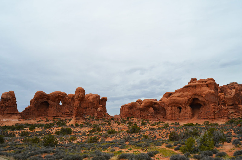 Parade of Elephants in Arches National Park, Utah