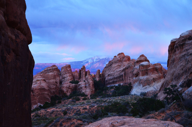 Arches and La Sal Mountains in Arches National Park, Utah