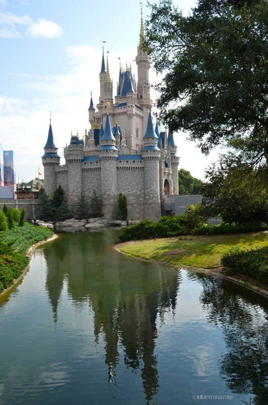 Cinderella Castle Reflected