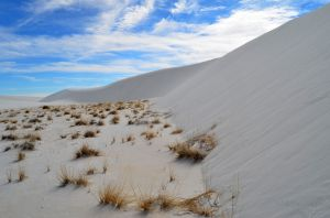 JKW_4732web Dune at White Sands.jpg