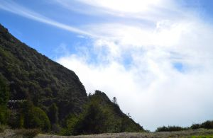 JKW_8106web Fog Rising to the Pacific Coast Highway.jpg